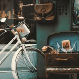 vintage wielen